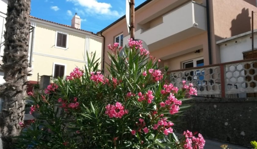 Apartment Ivana in the centre of town – Vrbnik – Island Krk – Croatia