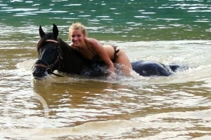 Horseback riding, horses, swimming in the sea with a horse