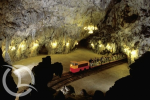 Postojna Cave One day excursion Travel Agency Infomedulin Medulin Istria Croatia Slovenia