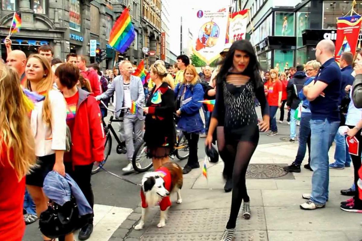 Gay sex klubovi ft lauderdale